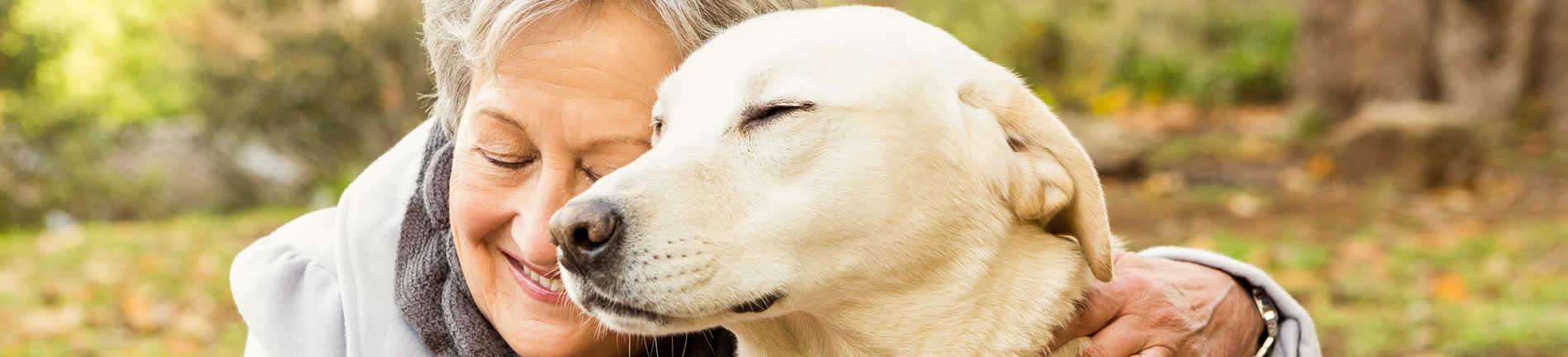 pallivet lady and dog